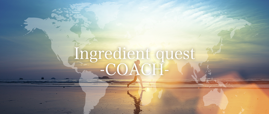 Ingredient quest -COACH-